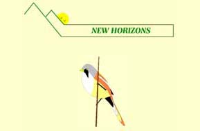 Click to visit New Horizons web site